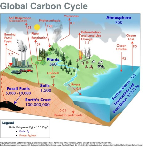 Carbon-Cycle-nasa.gov