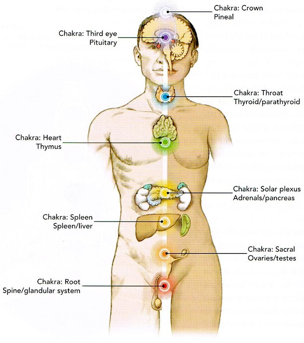 Energy body, Chakra and human body 2