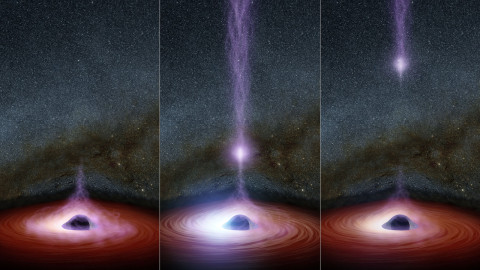 In 2014, NASA's Nuclear Spectroscopic Telescope Array, or NuSTAR, and Swift space telescopes witnessed an X-flare from the supermassive black hole in a distant galaxy called Markarian 335. | Figure shows how a shifting corona can create a flare of X-rays around a black hole. The corona gathers inward (left), becoming brighter, before shooting away from the black hole (middle and right). | A supermassive black hole is depicted in this artist's concept, surrounded by a swirling disk of material falling onto it. The purplish ball of light above the black hole, a feature called the corona, contains highly energetic particles that generate X-ray light. If you could view the corona with your eyes, it would appear nearly invisible since we can't see its X-ray light. Source: NASA